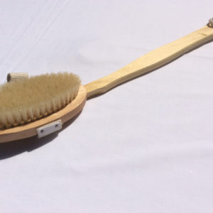 Body Brush - long handle