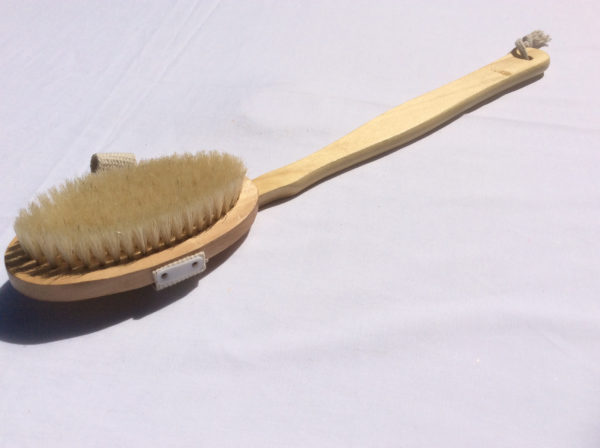 Body Brush - long handle